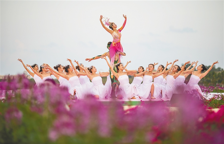 三亚水稻国家公园举行首届花田音乐会